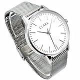 Clarkwatches Armbanduhr Damen analog Quarz mit Mesh Edelstahlarmband Silber