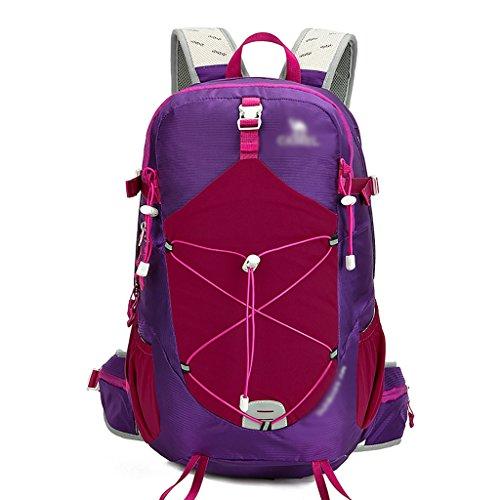 zaino trekking Spalla sacchetto esterno 35L maschio / femmina Sezione un'escursione alpinismo Bag Zaini da escursionismo ( Colore : A , dimensioni : 35L-31*17*52.5cm ) A