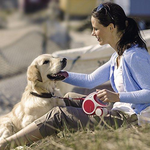 flexi Roll-Leine Vario L Gurt 8 m max. 50 kg anthrazit für Hunde - 5
