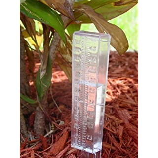 RAIN GAUGE by American Science & Surplus