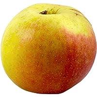 Äpfel Berlepsch (1 kg) - Bio