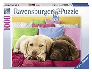 Ravensburger - Cachorros de Labrador, puzzle de 1000 piezas (19115 4)