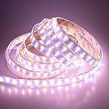 LTRGBW Doble Fila DC 24V 600leds / 5m carrete RGBW RGB + blanco cálido (2800K-3000K) LED luces de tira 5050 SMD impermeable RGBW en funda de silicona IP67 para el banquete de boda de vacaciones al aire libre de iluminación LED