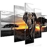 Bilder Afrika Elefant Wandbild 150 x 100 cm Vlies - Leinwand Bild XXL Format Wandbilder Wohnzimmer Wohnung Deko Kunstdrucke Gelb Grau 5 Teilig - MADE IN GERMANY - Fertig zum Aufhängen 001253c
