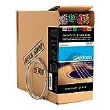 D\'Addario Cordes en Bronze Phosphoreux pour Guitare Acoustique D\'Addario EJ16-B25 Light 25-Jeux