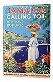 Blechschild Welt Reise Jamaica Urlaub Meer Obstkorb Palmen Wand Deko Schild 20X30 cm