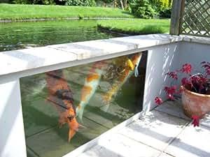 Koi Pond Viewing Window Atlantica Gardens Infinity 1800