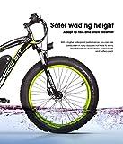 RICHBIT eBike RLH-022, E-Bike, 1000 W, 48 V, 17 AH,Blau Vergleich