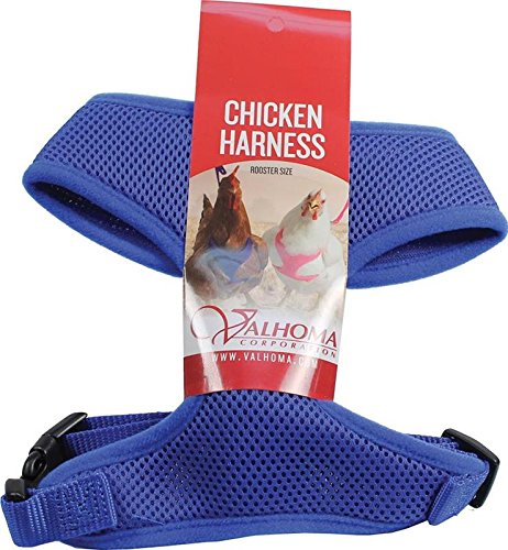 valhoma 756M C bl 625478Mesh Chicken Geschirr, blau, Rooster (Chicken Harness)