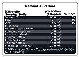 Mammut Burner CSC, mit Grüntee Extrakt, Guarana-Extrakt, L-Carnitin,  90 St. Dose (1 x 68.01 g) - 4