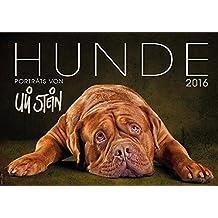 Hunde 2016 - Wandkalender: Porträts von Uli Stein