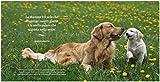 Mamme-straordinarie-Lezioni-damore-dal-mondo-animale-Ediz-illustrata