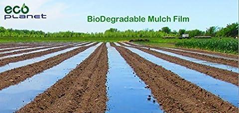 EcoPlanet Bio-degradable Agricultural Plasticulture Black Mulch Film Gardening Farming Film (1 Mil, 3 feet x 50 feet) by EcoPlanet