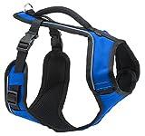 PetSafe Easy Sport Hundegeschirr S blau, extra, Reflektoren, Geschirrgriff, für Kleine Hunde