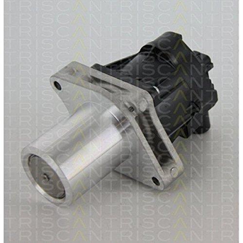 TRISCAN 8813 24205 AGR-Ventile