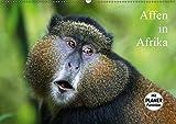 Affen in Afrika (Wandkalender 2019 DIN A2 quer): Affen in ihrem natürlichen Lebensraum (Geburtstagskalender, 14 Seiten ) (CALVENDO Tiere)