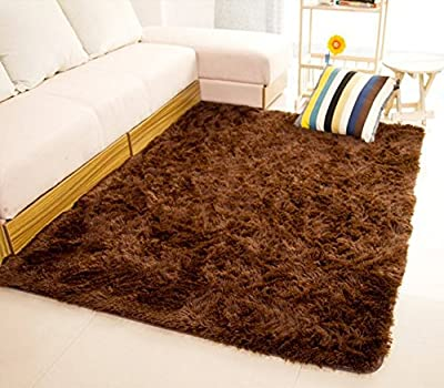 Hangnuo Anti-skid Living Room Soft Carpets Floor Mat Shaggy Area Rug 80x120cm(2.6x3.9ft) - low-cost UK light store.