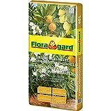 Floragard Zitrus- und Mediterranpflanzenerde 1x40l