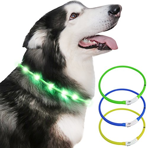 Image of: Como Light Up Dog Collar Usb Rechargeable Light Up Pet Safety Collar With Glowing Modes Wikihow Lightup Il Miglior Prezzo Di Amazon In Savemoneyes