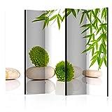murando Raumteiler Spa Zen Foto Paravent 225x172 cm beidseitig auf Vlies-Leinwand Bedruckt Trennwand Spanische Wand Sichtschutz Raumtrenner grün weiß beige b-B-0150-z-c