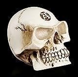 Totenkopf Schaltknauf - Alchemist knochenfarben - Schädel Skull