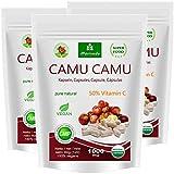 Camu Camu Kapseln 8:1 Extrakt mit 50% natürlichem Vitamin C (360 oder 120 Stück) - veganes Qualitätsprodukt von MoriVeda (3x120)