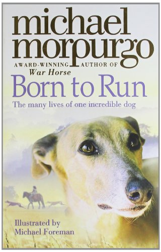 Born To Run (Collector's Edition)