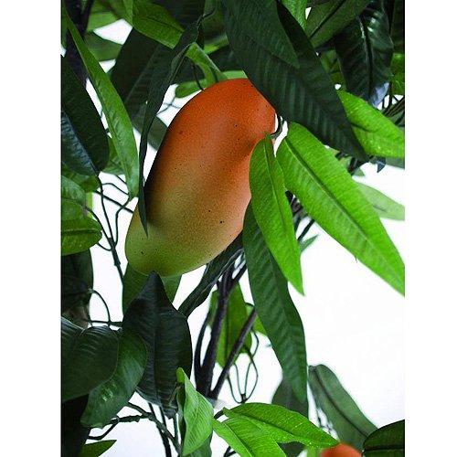 Euro Palms 82506720 Mangobaum mit Früchten, 165 cm