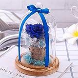 samLIKE Endlose konservierte Rosen Blume im Glas romantisches Geschenk Valentinstag Geburtstag (Blau)