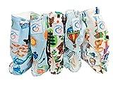 Famicheer Pannolino con motivi in tessuto (con due inserti per pannolini) - Set di 5 - ragazzini tema