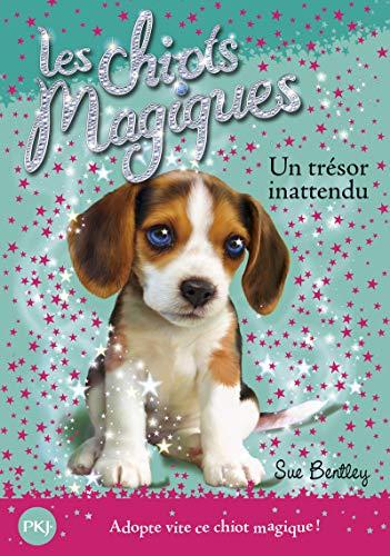 Les chiots magiques - tome 14 : Un trésor innatendu (14)