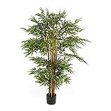 Pureday Kunstpflanze Bambus - täuschend echt - Stamm aus echtem Holz - inkl. schwarzem Übertopf - ca. 160 cm