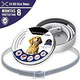 HuhuswwBin - Collar Ajustable para Gato y Perro, antipulgas y Mosquitos, protección Exterior para Mascotas