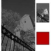 B+W F-Pro 090 - Filtro de contraste para 39 mm, rojo claro