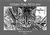 Katzen Pop Art in s/w - Kleine Tiger unter uns (Wandkalender 2019 DIN A4 quer): Unsere Lieblinge einmal in einer anderen Optik (Monatskalender, 14 Seiten ) (CALVENDO Tiere)