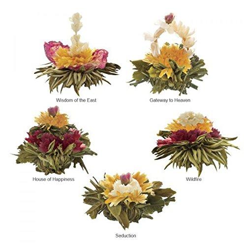 """Yang Chai Teeblumen Geschenkset""""Excite"""" – Tee Geschenk Flower Tea 6 versch.Teeblumen in Metalldose MIT Teeblumenhalter"""