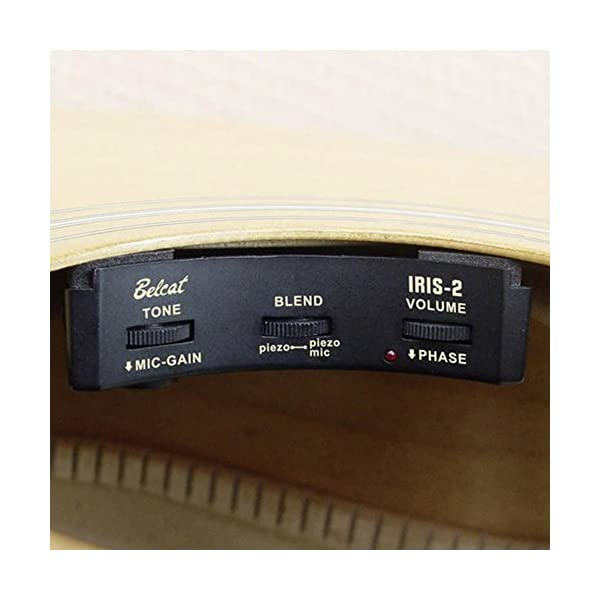 Belcat Iris-2 Sound Hole Preamp