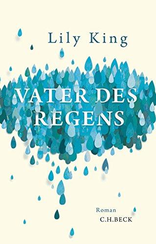 Vater des Regens: Roman