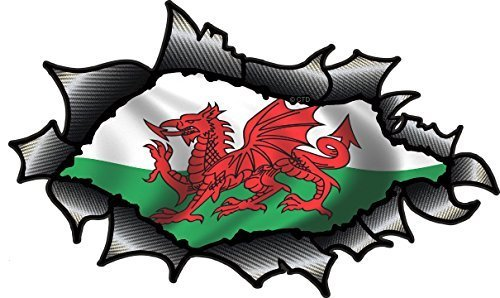 SPEED DEMONS PRIDE BURST RIP TORN TEAR STICKER GRAPHIC SELF ADHESIVE FOR ANY SURFACE INCLUDING LAPTOPS AND CARS WALES WELSH FLAG FOOTBALL RUGBY