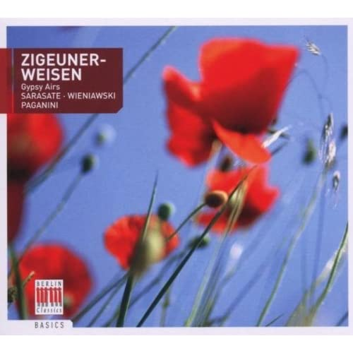 Violin Concerto No. 2 in D Minor, Op. 22: I. Allegro moderato