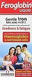 Vitabiotics Feroglobin Liquid 500ml by VITABIOTICS LTD