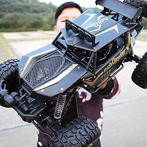 YYHOUSTOY Ferngesteuertes Auto, 1:10 2,4 Ghz Funkferngesteuertes Auto RC Offroad-Hobby Elektrisch Schnell Rennen Rock Crawler Monster Truck Geschenk Für Jungen Teens Erwachsene, Schwarz