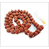 Natural 8 Face Rudraksha Mala 14 Mm Bead Size 108 +1 Beads For (Lab Certified By Gemmologist). Natural 8 Face Rudraksh Beads / Natural Eight Face Rudraksh Mala / 8 Mukhi Rudraksh / 100% Energised / Natural 8 Mukhi Rudraksh / Original 8 Face Rudraksha Bead