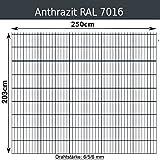 Gittermatte Doppelstabmatte Anthrazitgrau RAL 7016/Höhen 83cm - 203cm x Breite 250cm/Drahtstärke 6/5/6mm/Maschenweite 50 x 200mm (Anthrazit, 203cm x 250 cm)
