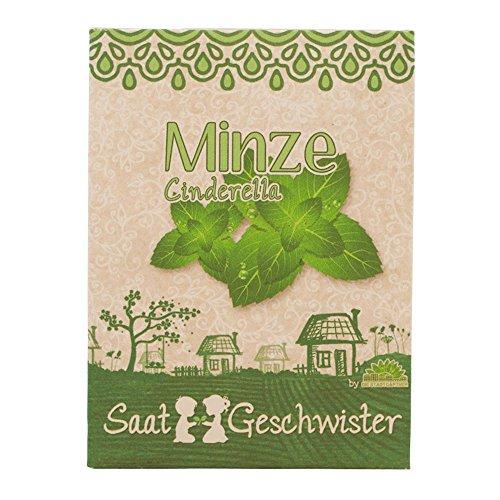 """Image of Minze """"Cinderella""""-Saatgut (frischer Geschmack)"""