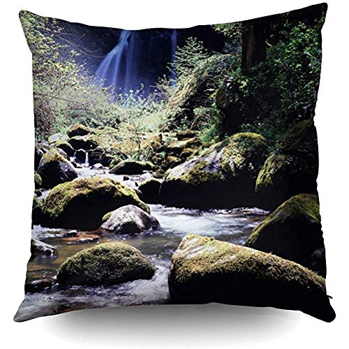 DDHHFJ Pillowcase,Oregon Siskiyou National Forest Elk Creek Decorative Throw Pillow Case 18X18Inch,Home Decoration Pillowcase Zippered Pillow Covers Cushion Cover with Words for Book Lover Worm Sofa -