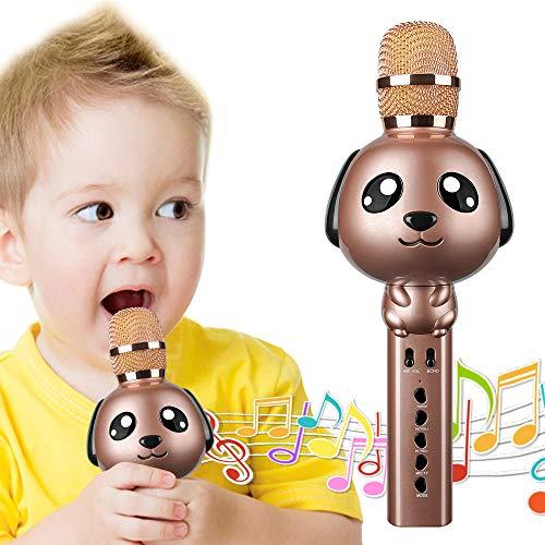 Microfono per bambini,Microfono Karaoke Bluetooth Wireless con altoparlante Giocattolo portatile palmare Karaoke Machine Casa Festa Eco Mic Karaoke senza fili Regalo di Pasqua per Ragazzi Ragazze