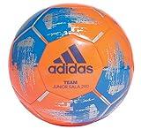 adidas Futsal Team JS290