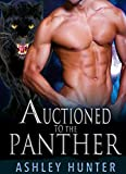 Auctioned To The Panther (Wild Shifters Book 2)