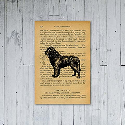 Póster de: NEWFOUNDLAND de perro dermatoquiste ANIMAL de libro clásico de pergamino en la parte superior del (A3 maxi - 28,8 x 43,2 cm/11,3 x 17 en, semi-brillante de raso de papel, diseño de mujer con esfera decorada de nieve diseño con texto en inglés)